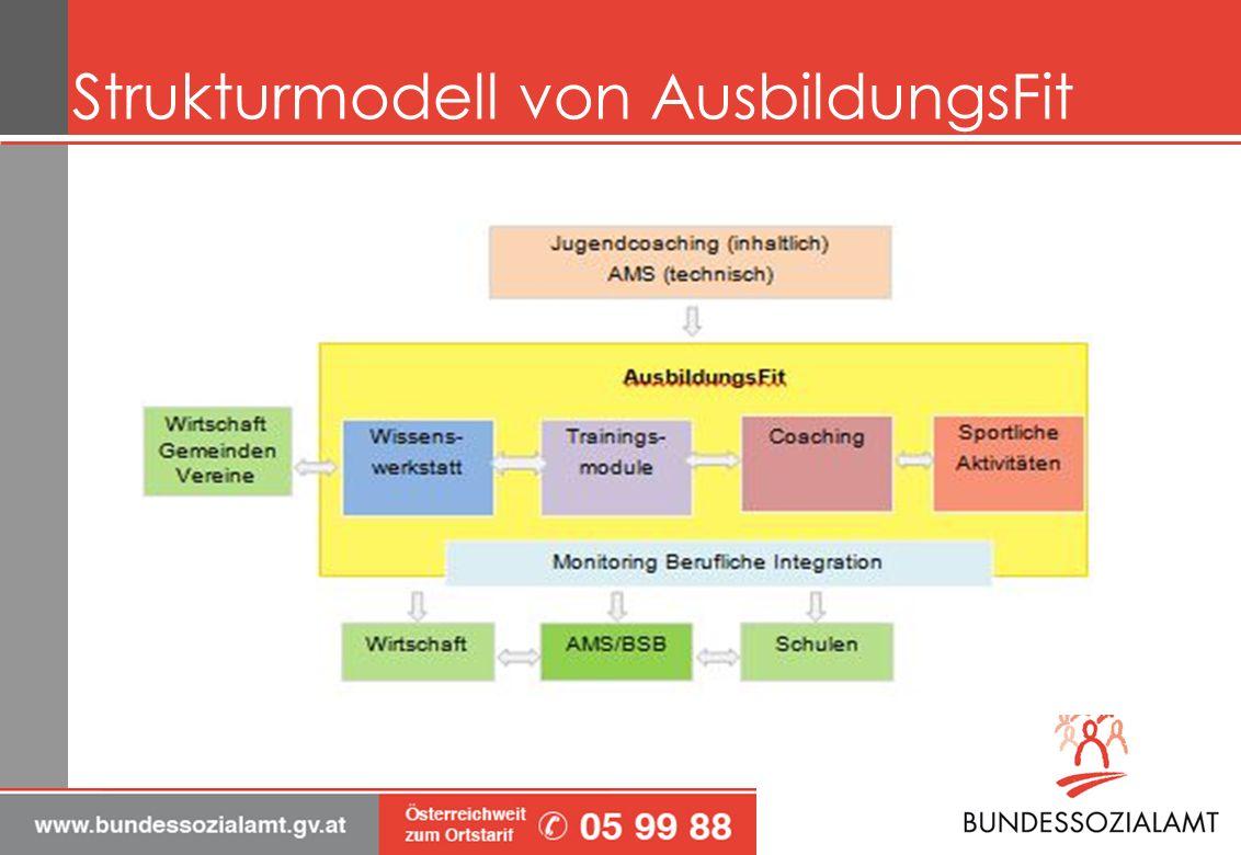 Strukturmodell von AusbildungsFit