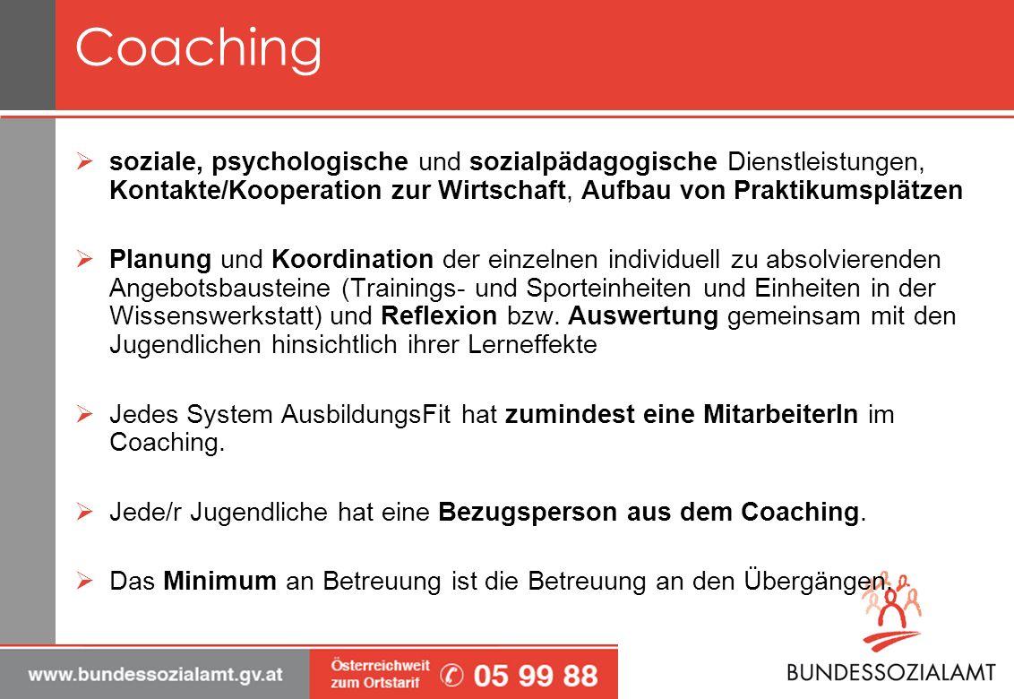 Coaching soziale, psychologische und sozialpädagogische Dienstleistungen, Kontakte/Kooperation zur Wirtschaft, Aufbau von Praktikumsplätzen.