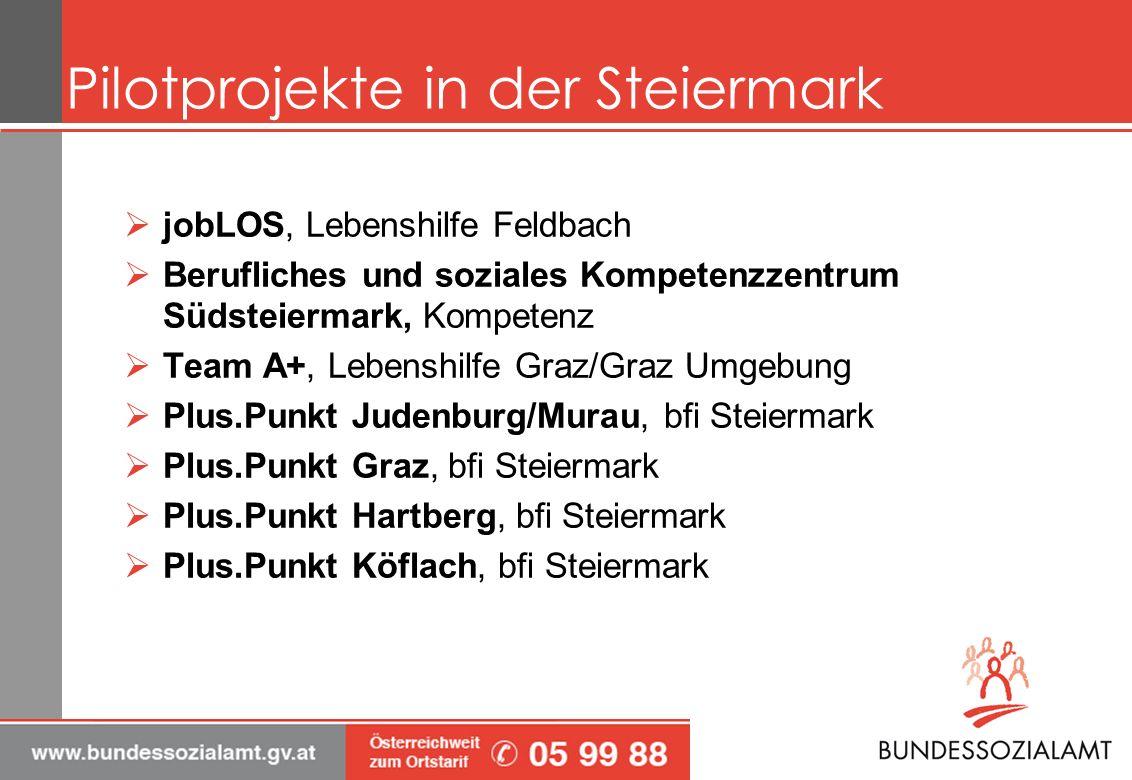 Pilotprojekte in der Steiermark