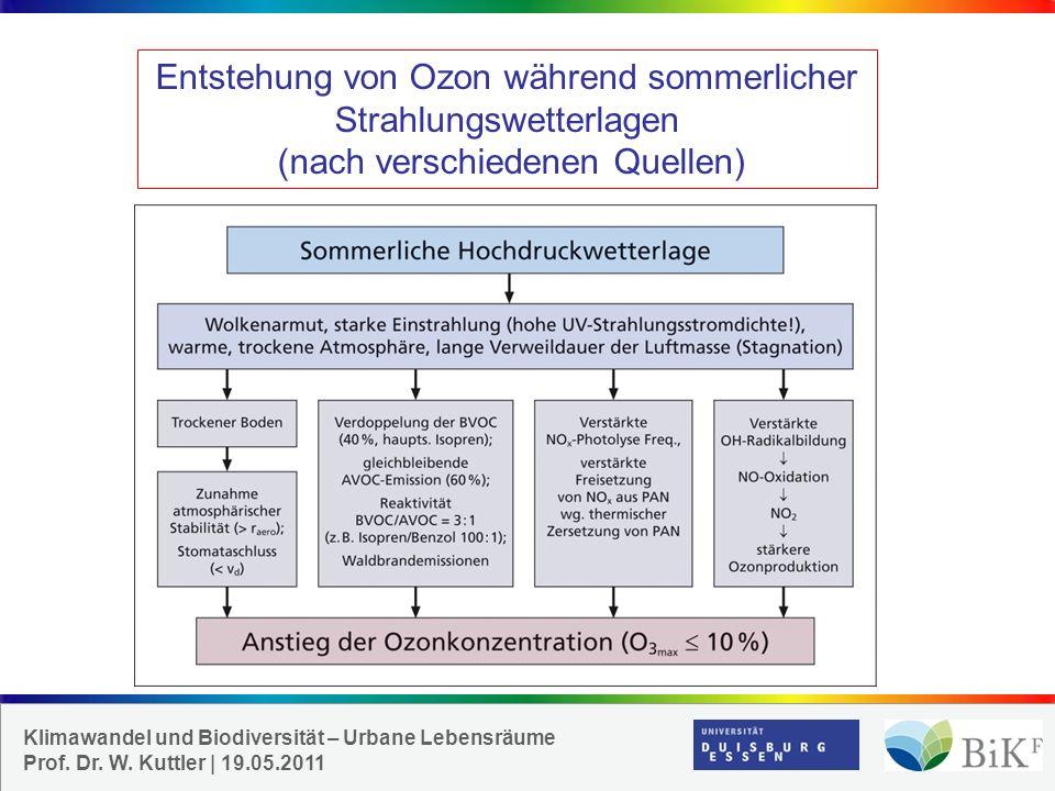 Entstehung von Ozon während sommerlicher Strahlungswetterlagen