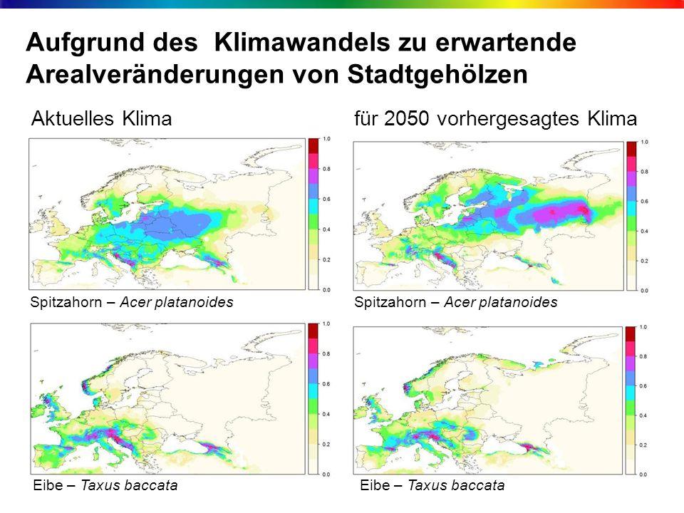 Aufgrund des Klimawandels zu erwartende Arealveränderungen von Stadtgehölzen