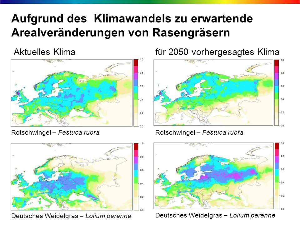 Aufgrund des Klimawandels zu erwartende Arealveränderungen von Rasengräsern