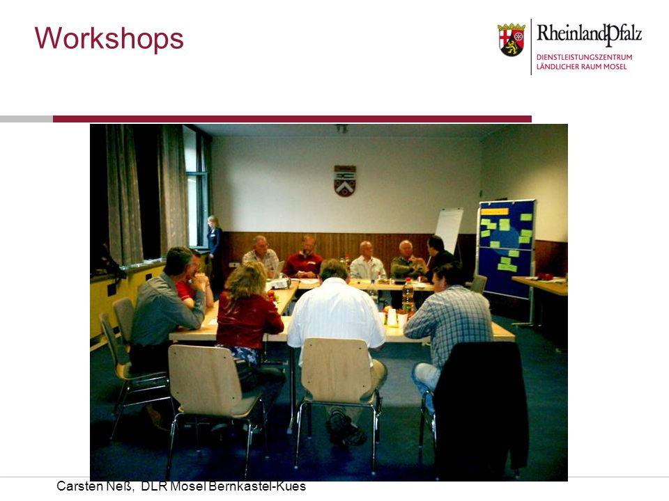 Workshops Carsten Neß, DLR Mosel Bernkastel-Kues