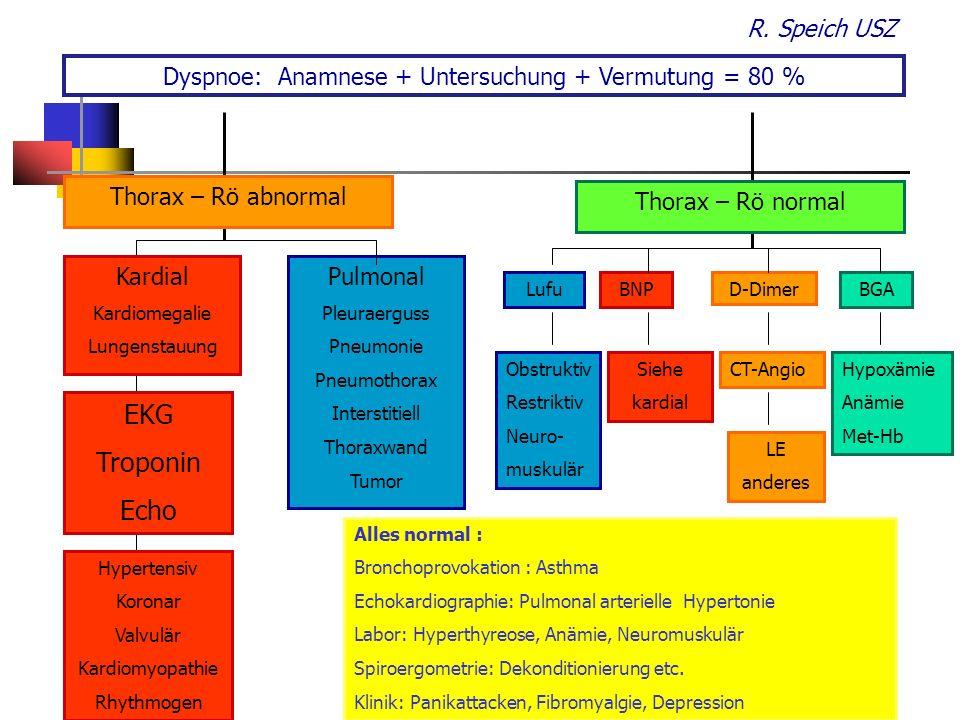 Dyspnoe: Anamnese + Untersuchung + Vermutung = 80 %