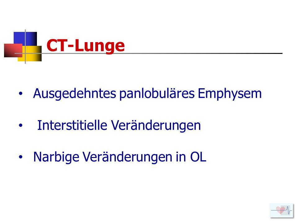CT-Lunge Ausgedehntes panlobuläres Emphysem