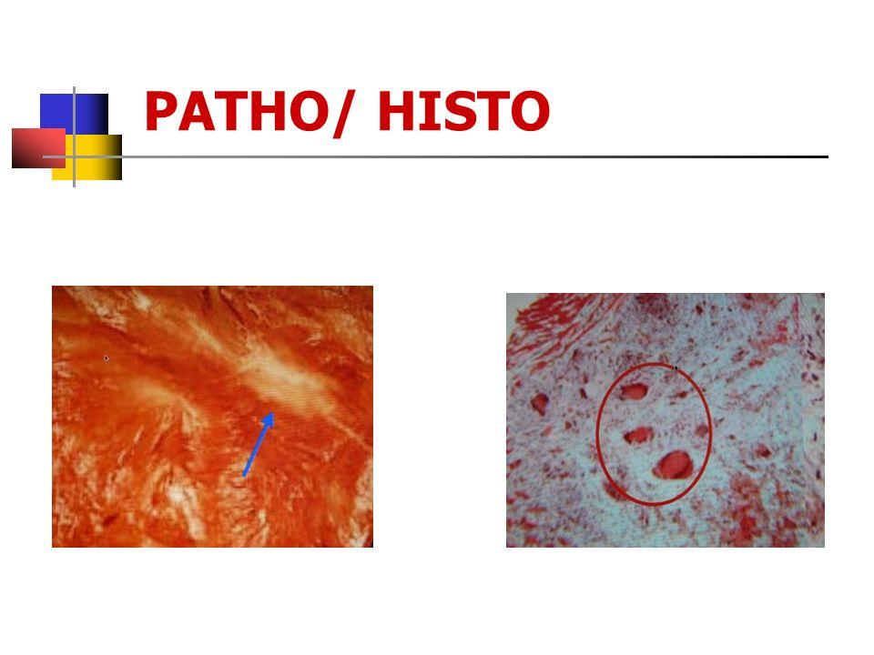 PATHO/ HISTO