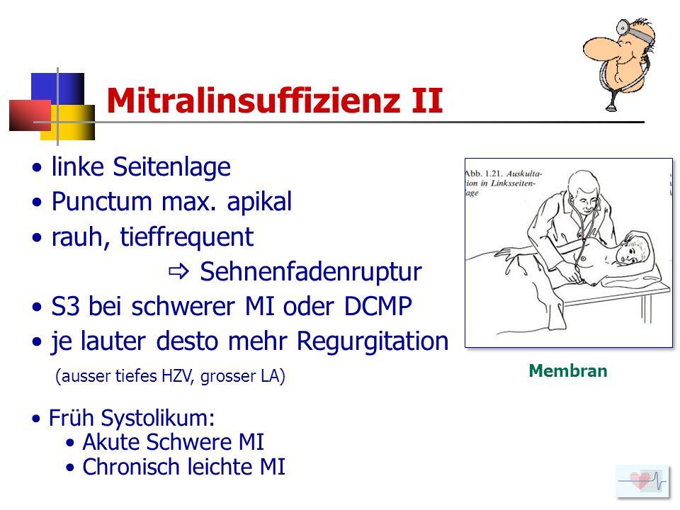 Mitralinsuffizienz II