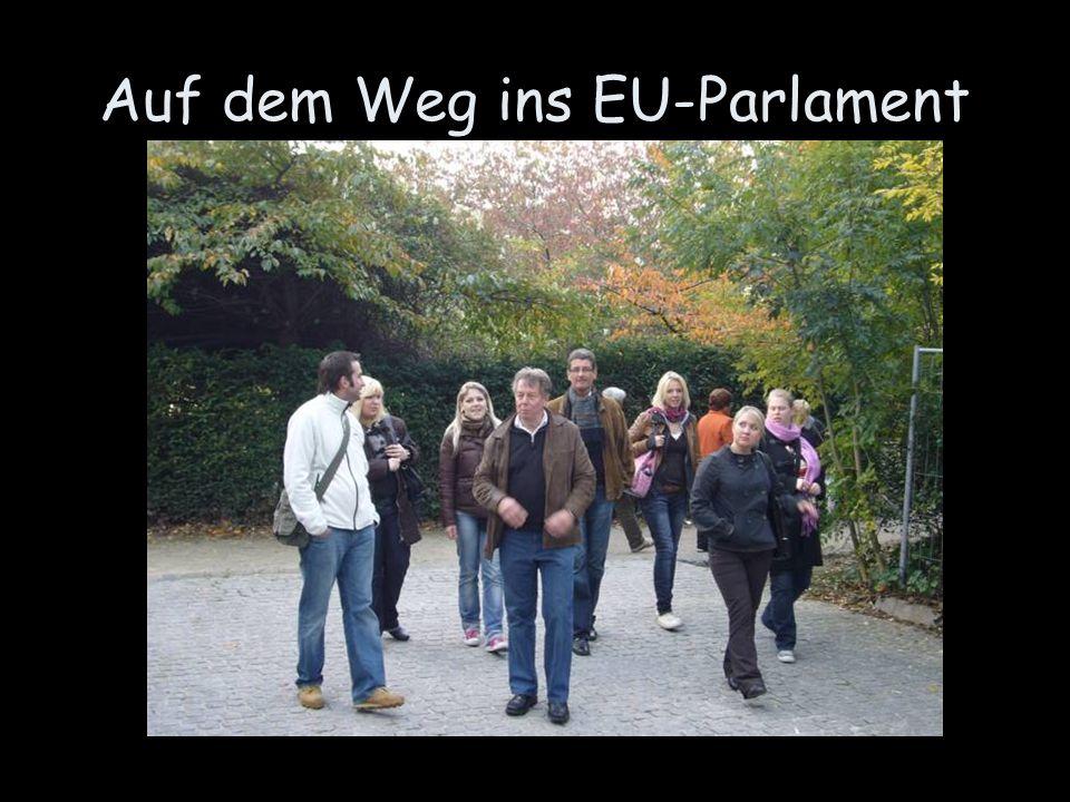 Auf dem Weg ins EU-Parlament