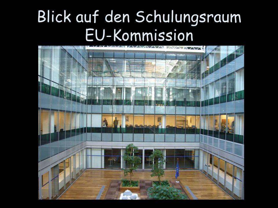 Blick auf den Schulungsraum EU-Kommission