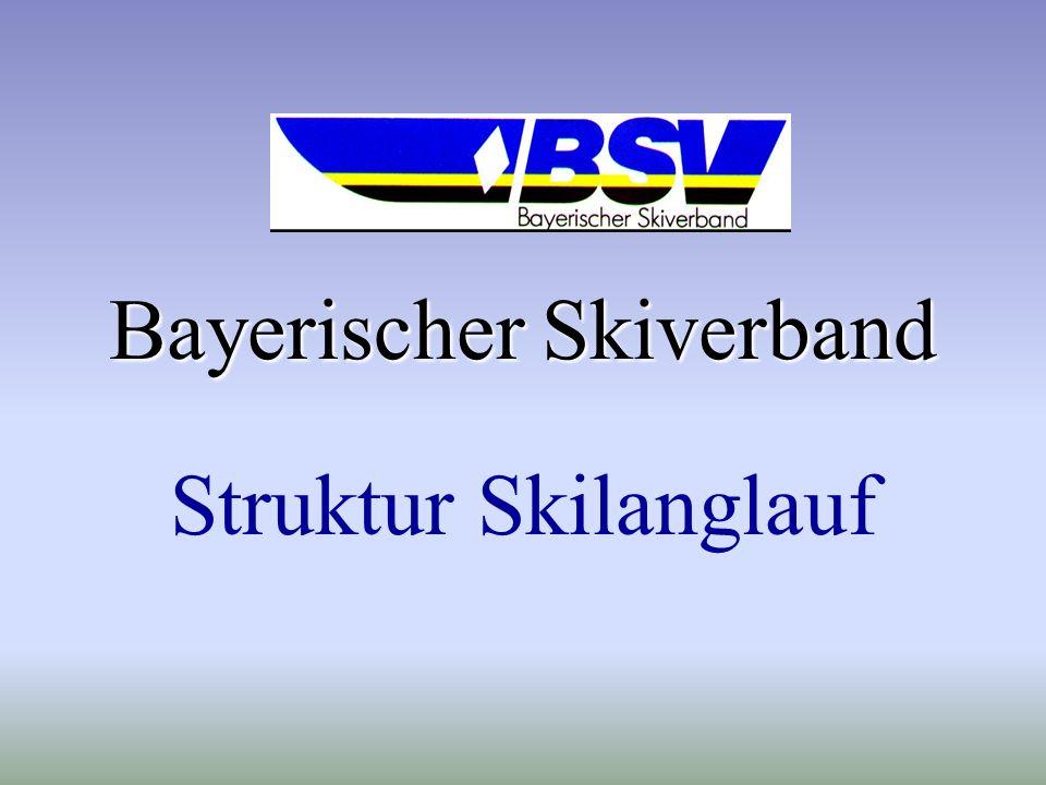 Bayerischer Skiverband
