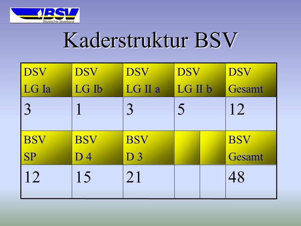 Kaderstruktur BSV 3 1 3 5 12 12 15 21 48 DSV LG Ia DSV LG Ib DSV