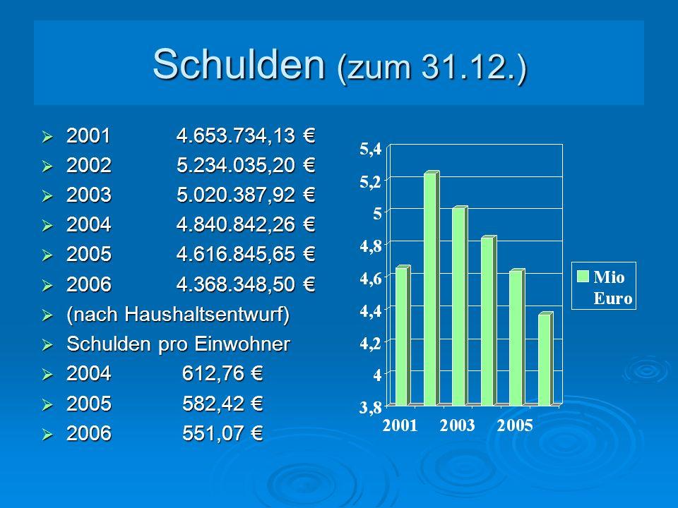 Schulden (zum 31.12.) 2001 4.653.734,13 € 2002 5.234.035,20 € 2003 5.020.387,92 € 2004 4.840.842,26 €