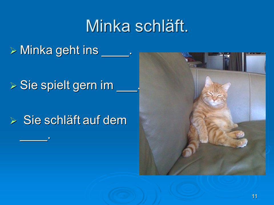 Minka schläft. Minka geht ins ____. Sie spielt gern im ___.