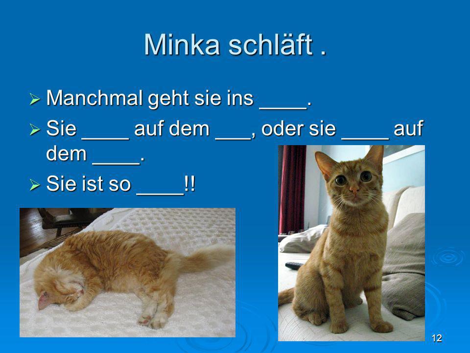 Minka schläft . Manchmal geht sie ins ____.