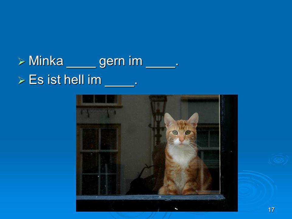 Minka ____ gern im ____. Es ist hell im ____.