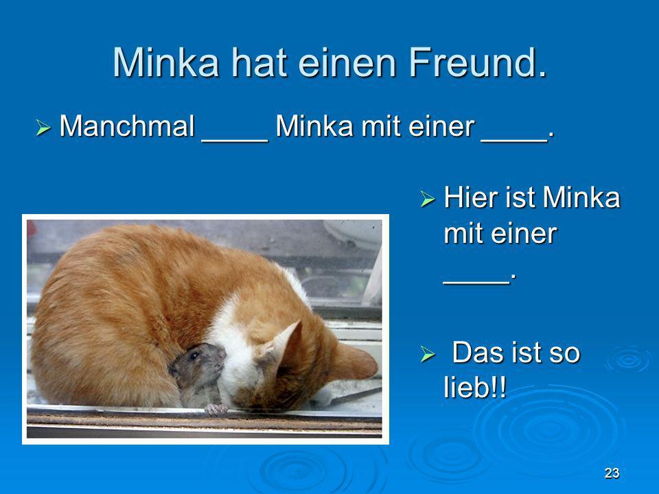 Minka hat einen Freund. Manchmal ____ Minka mit einer ____.