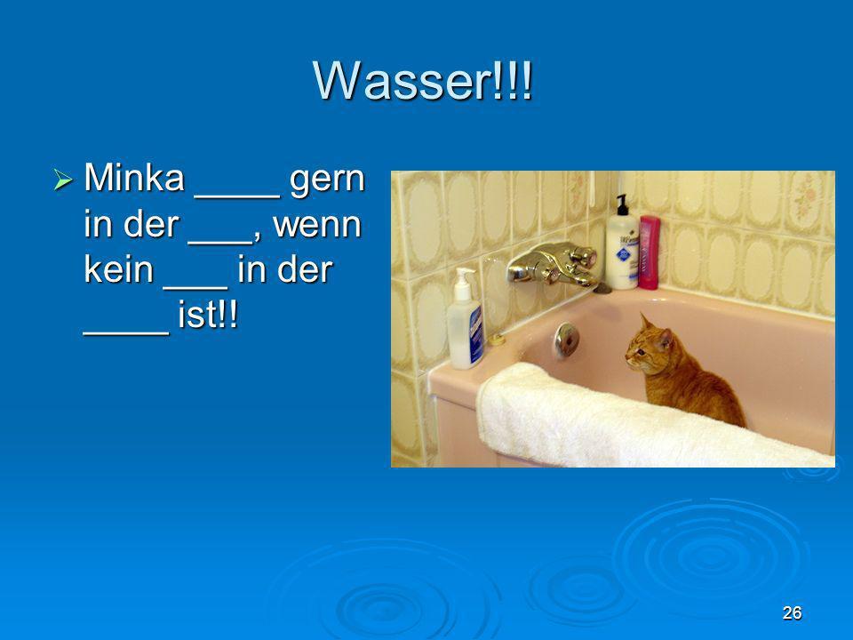 Wasser!!! Minka ____ gern in der ___, wenn kein ___ in der ____ ist!!