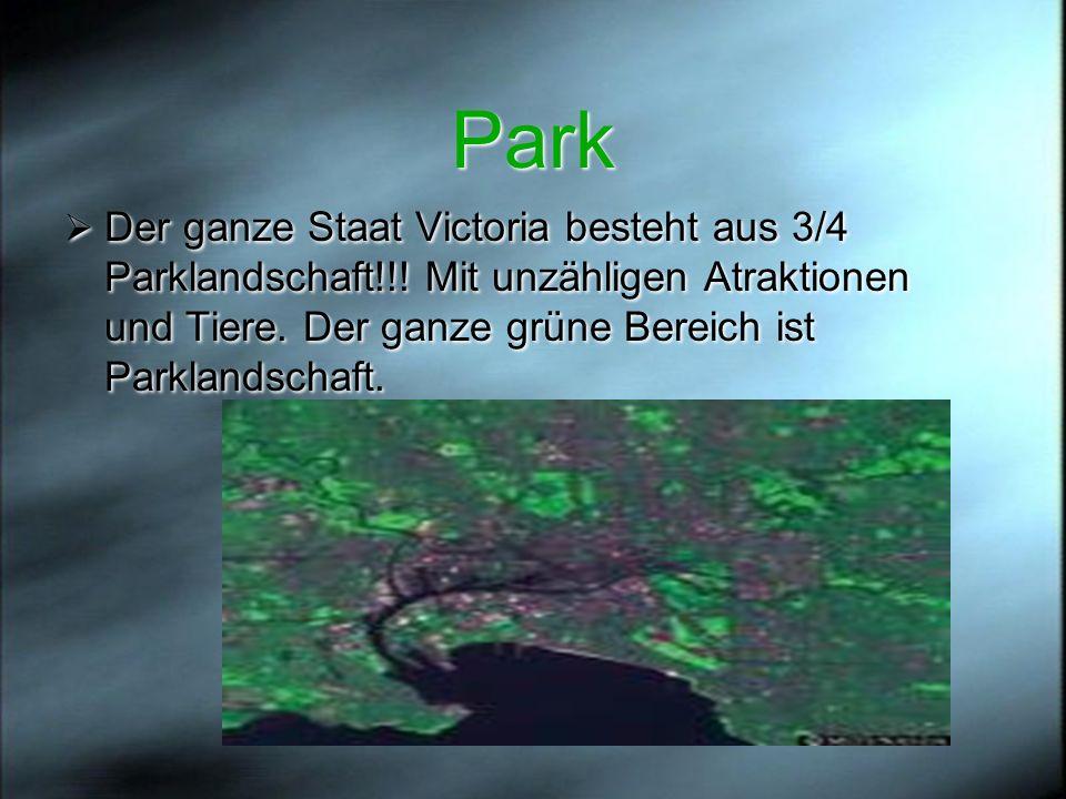Park Der ganze Staat Victoria besteht aus 3/4 Parklandschaft!!.