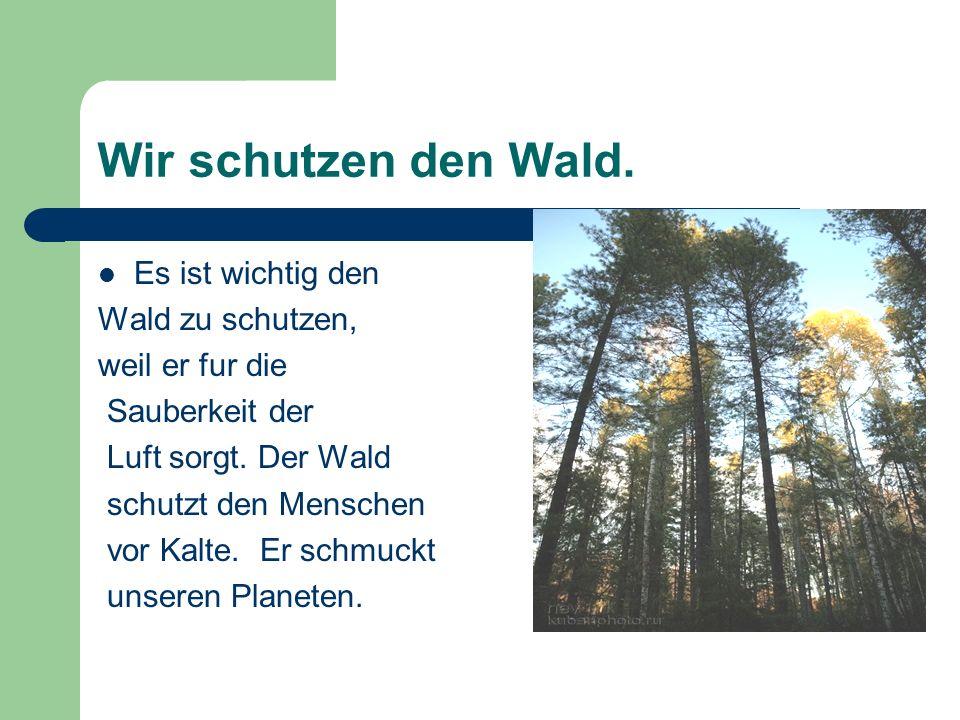 Wir schutzen den Wald. Es ist wichtig den Wald zu schutzen,