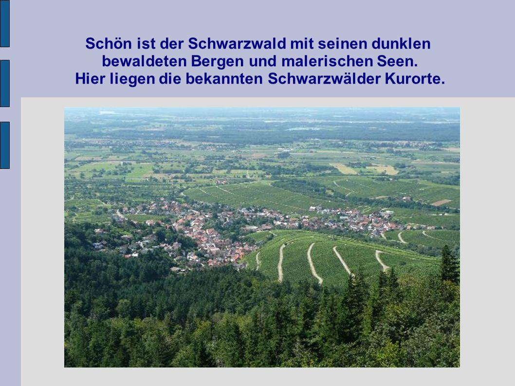 Schön ist der Schwarzwald mit seinen dunklen bewaldeten Bergen und malerischen Seen.