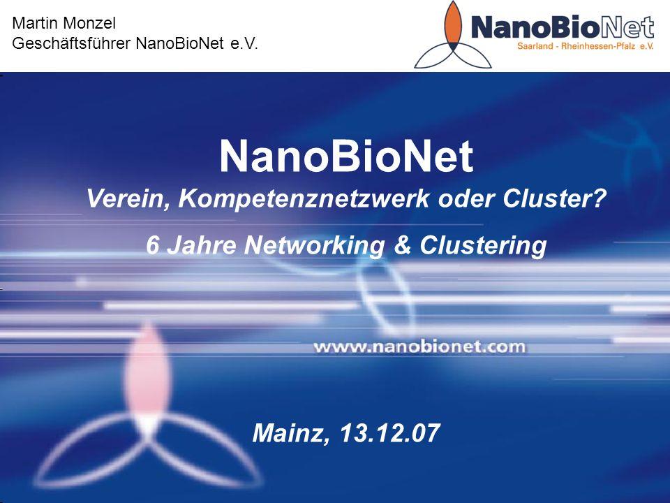NanoBioNet Verein, Kompetenznetzwerk oder Cluster