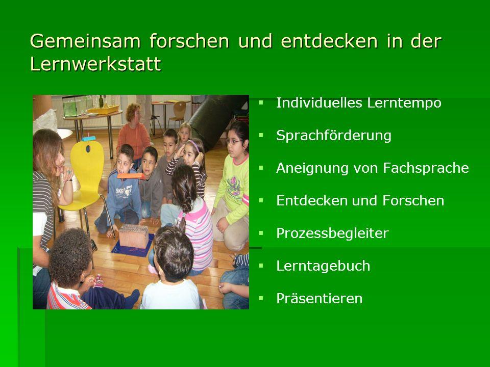 Gemeinsam forschen und entdecken in der Lernwerkstatt