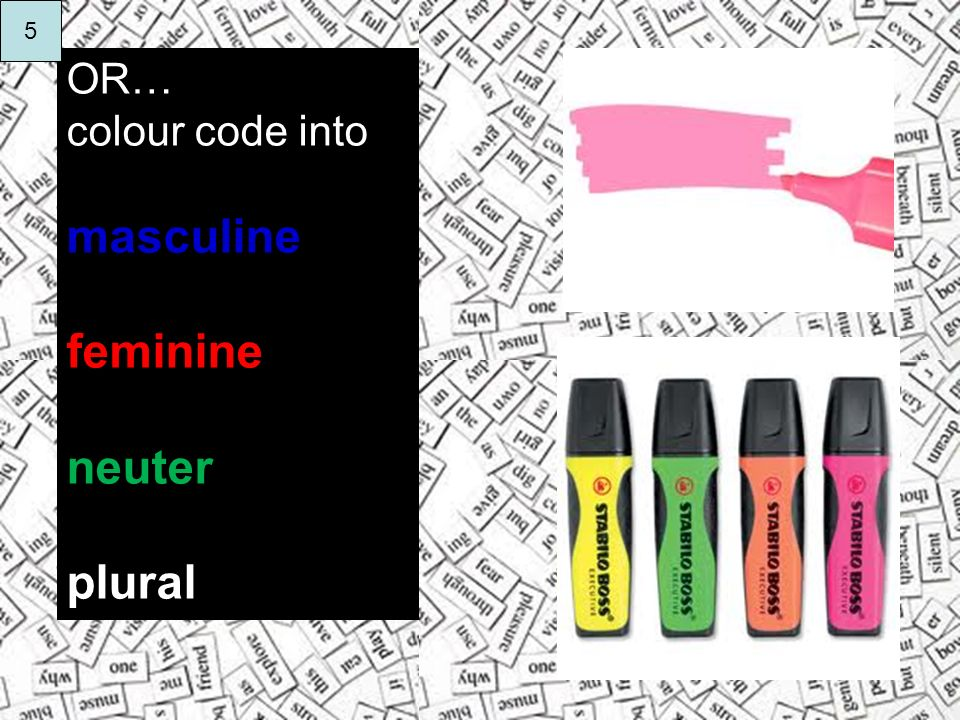 5 OR… colour code into masculine feminine neuter plural