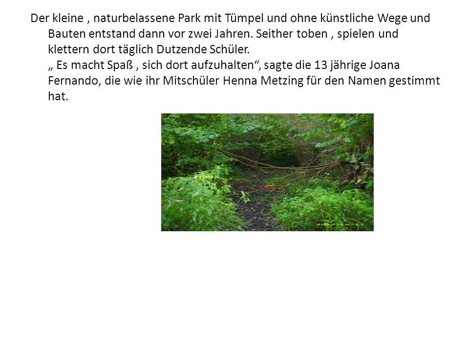 Der kleine , naturbelassene Park mit Tümpel und ohne künstliche Wege und Bauten entstand dann vor zwei Jahren.