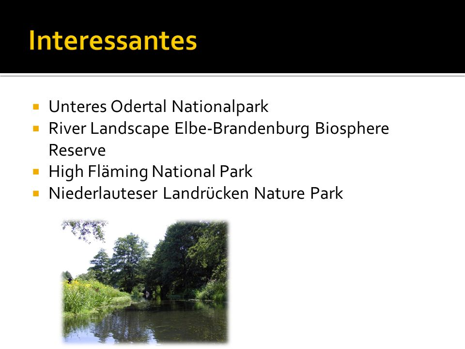 Interessantes Unteres Odertal Nationalpark