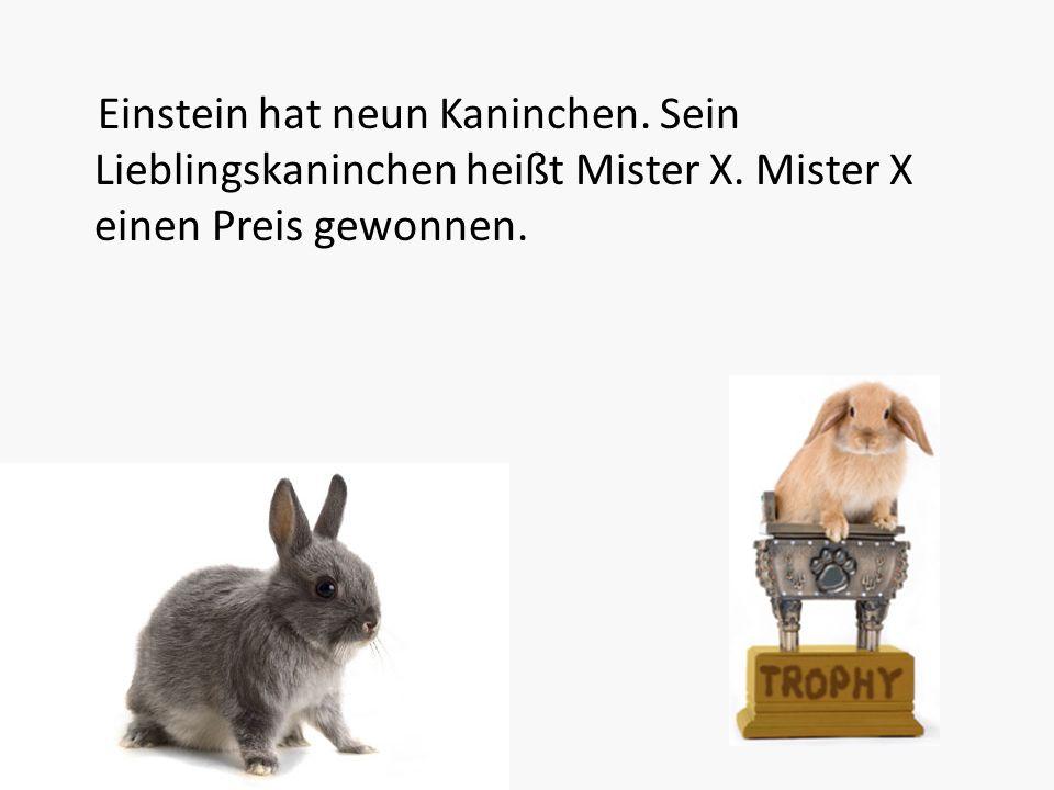 Einstein hat neun Kaninchen. Sein Lieblingskaninchen heißt Mister X