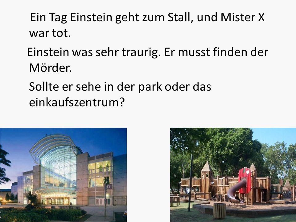 Ein Tag Einstein geht zum Stall, und Mister X war tot.