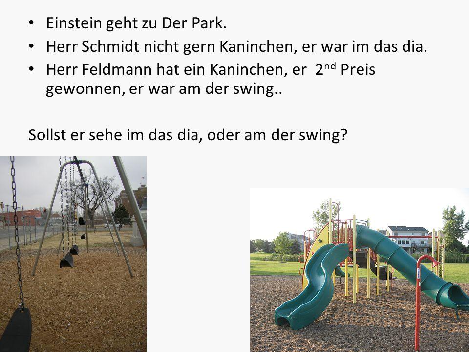 Einstein geht zu Der Park.