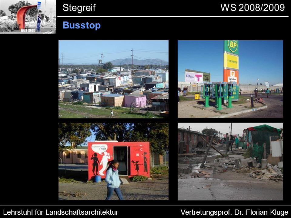 Problemfelder der Townships: