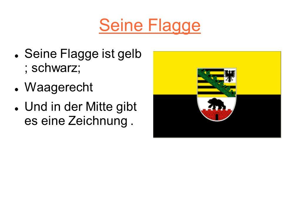 Seine Flagge Seine Flagge ist gelb ; schwarz; Waagerecht
