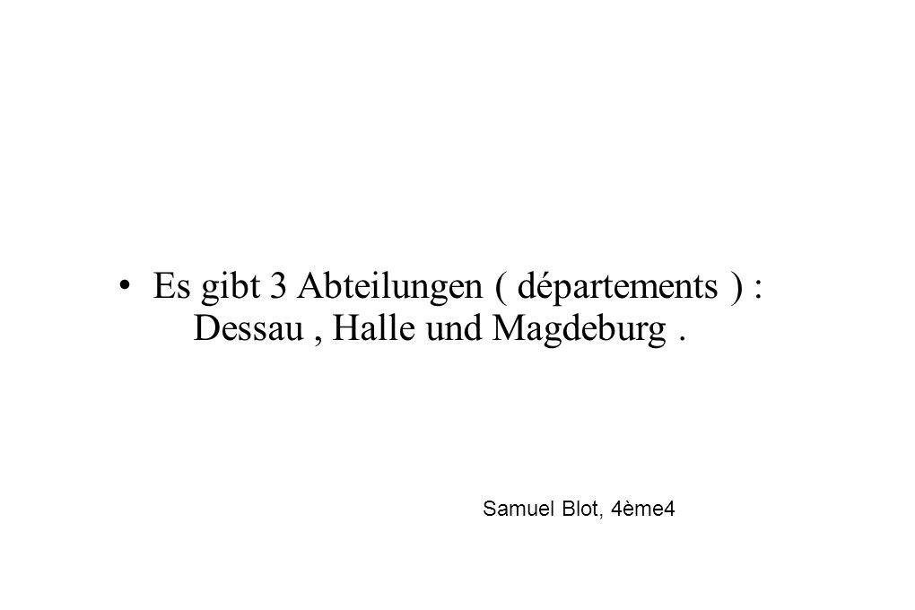 • Es gibt 3 Abteilungen ( départements ) : Dessau , Halle und Magdeburg .