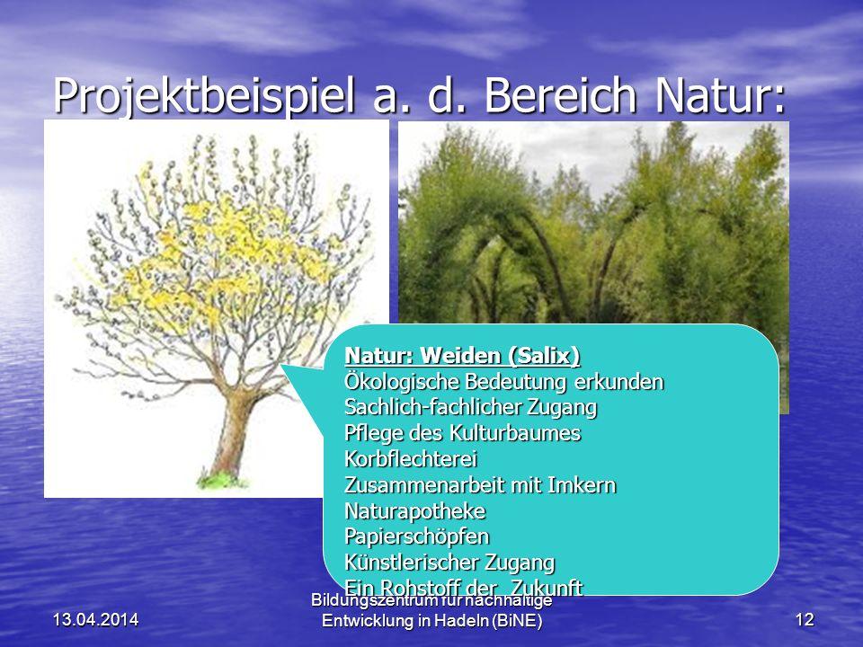 Projektbeispiel a. d. Bereich Natur: