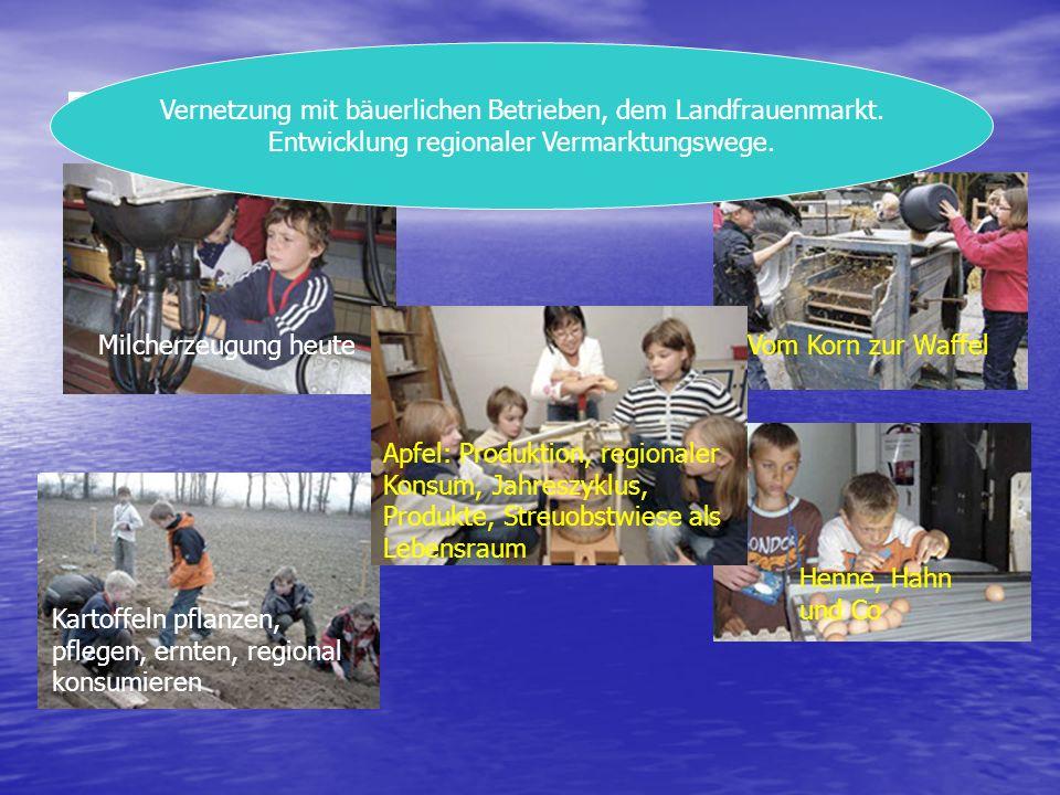 Projektbeispiele Landwirtschaft