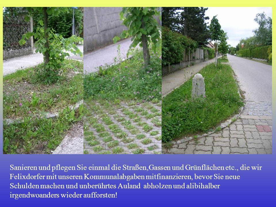 Sanieren und pflegen Sie einmal die Straßen,Gassen und Grünflächen etc
