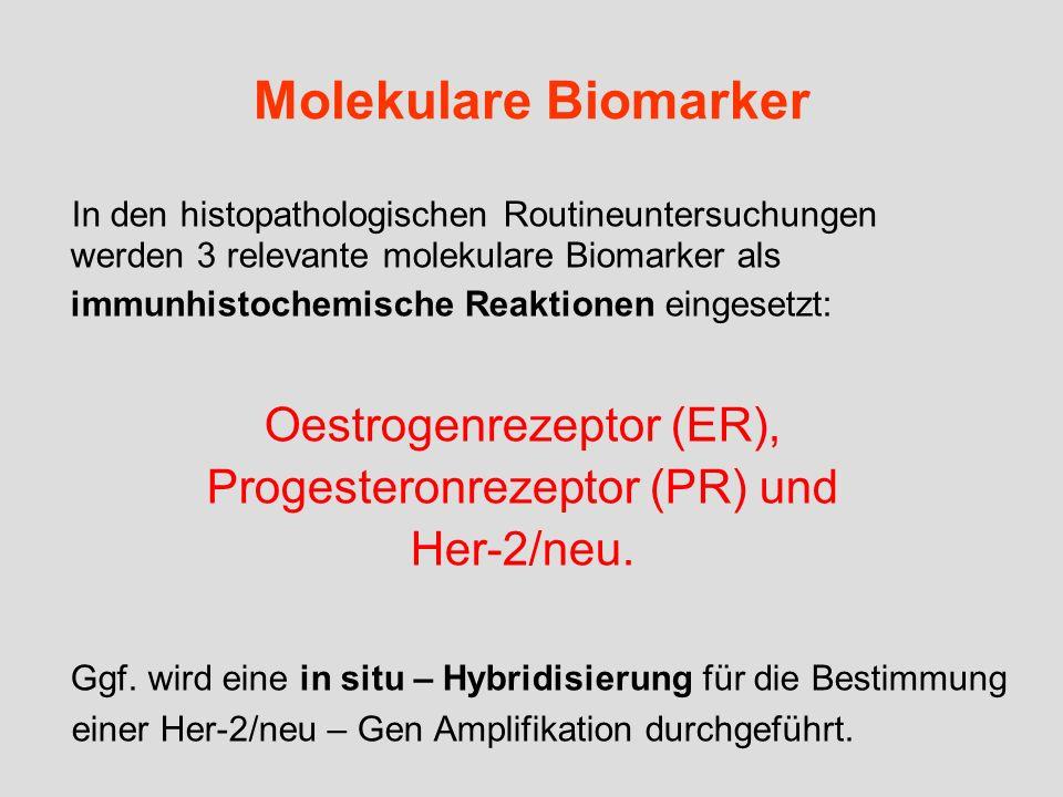 Molekulare Biomarker In den histopathologischen Routineuntersuchungen