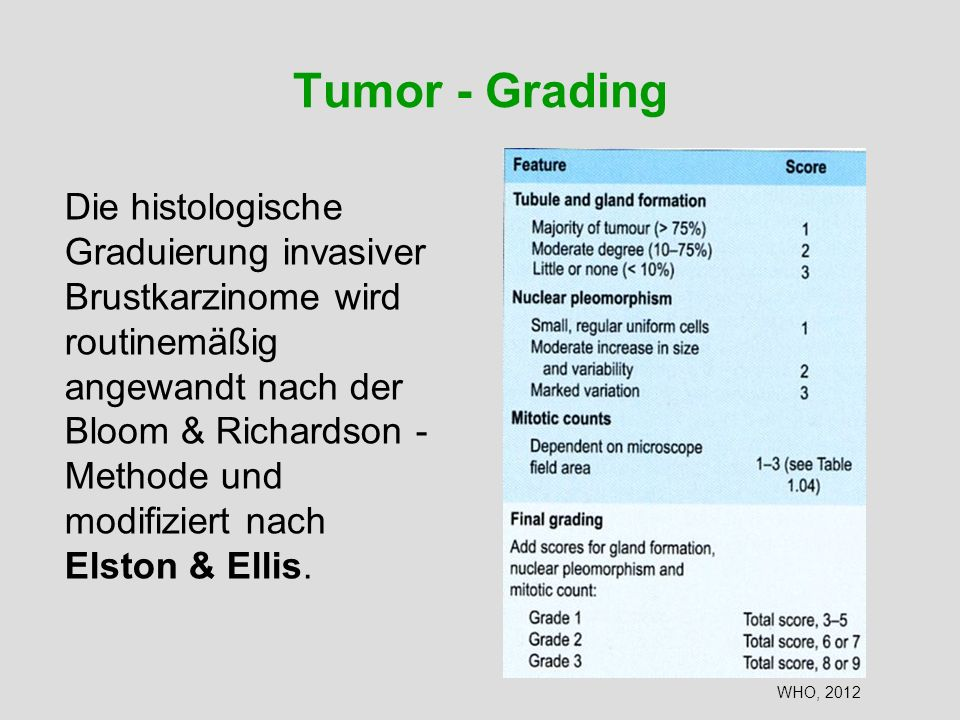 Tumor - Grading