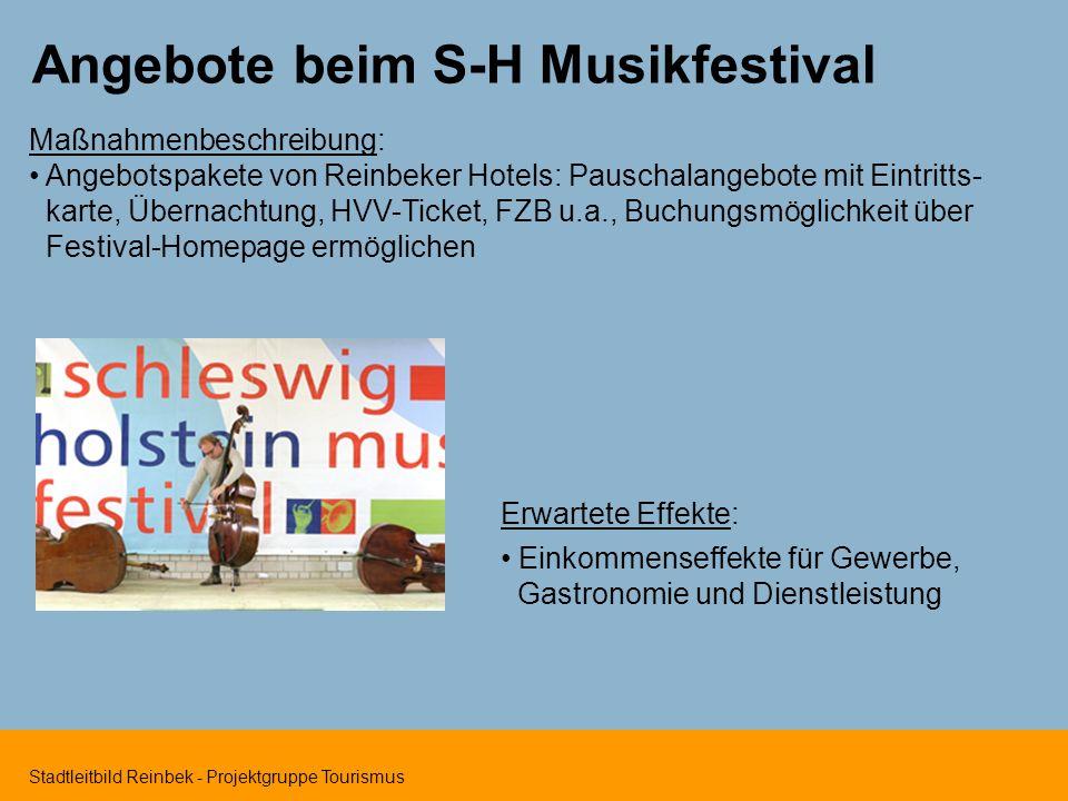 Angebote beim S-H Musikfestival