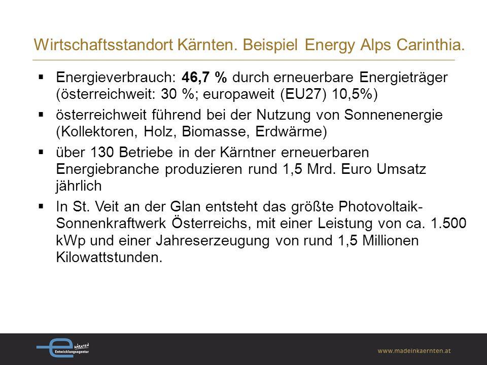 Wirtschaftsstandort Kärnten. Beispiel Energy Alps Carinthia.