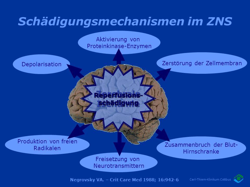 Schädigungsmechanismen im ZNS