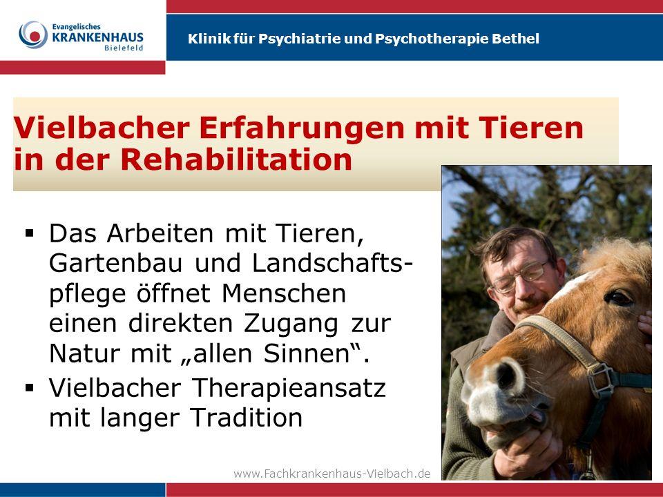Vielbacher Erfahrungen mit Tieren in der Rehabilitation