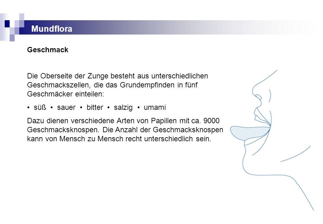 Gemütlich Geschmacksknospen Diagramm Fotos - Menschliche Anatomie ...