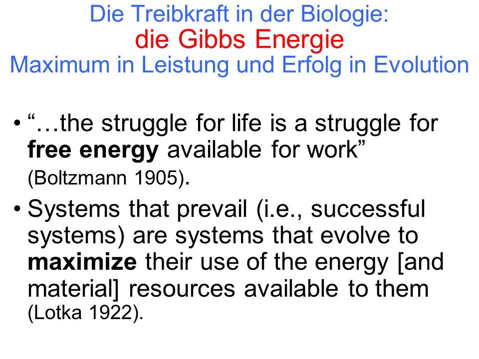 Die Treibkraft in der Biologie: die Gibbs Energie Maximum in Leistung und Erfolg in Evolution