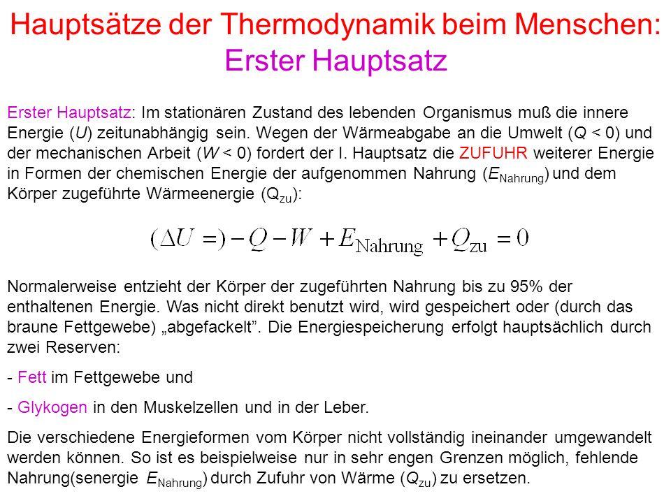 Gemütlich Thermodynamik Arbeitsblatt Bilder - Arbeitsblätter für ...