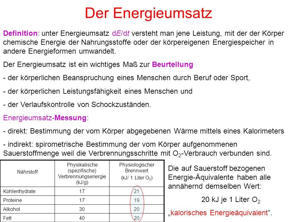 Der Energieumsatz