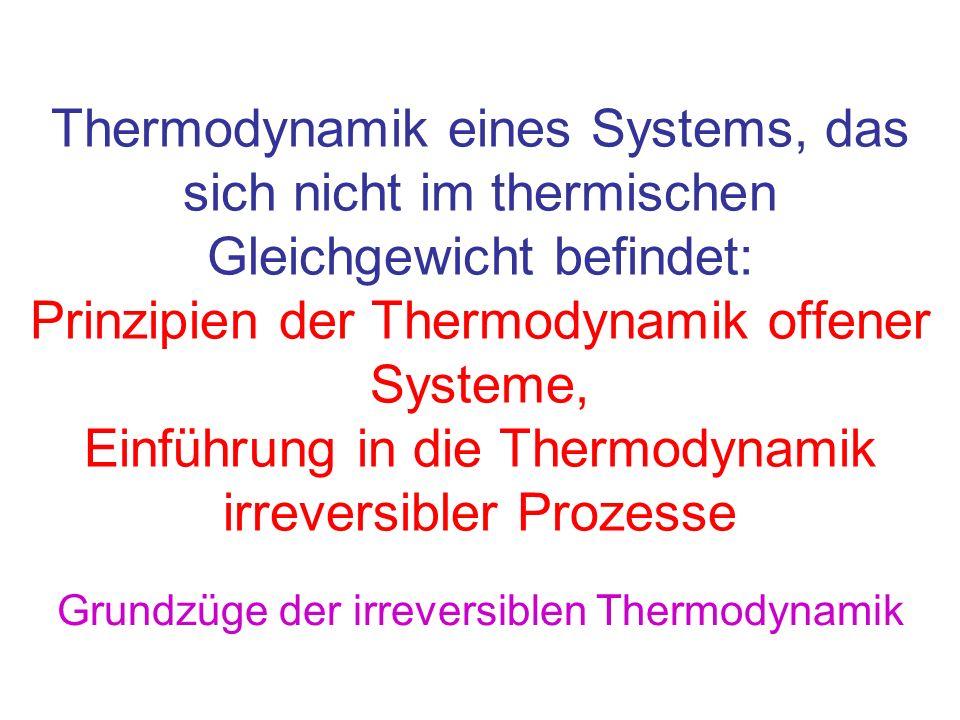 Grundzüge der irreversiblen Thermodynamik