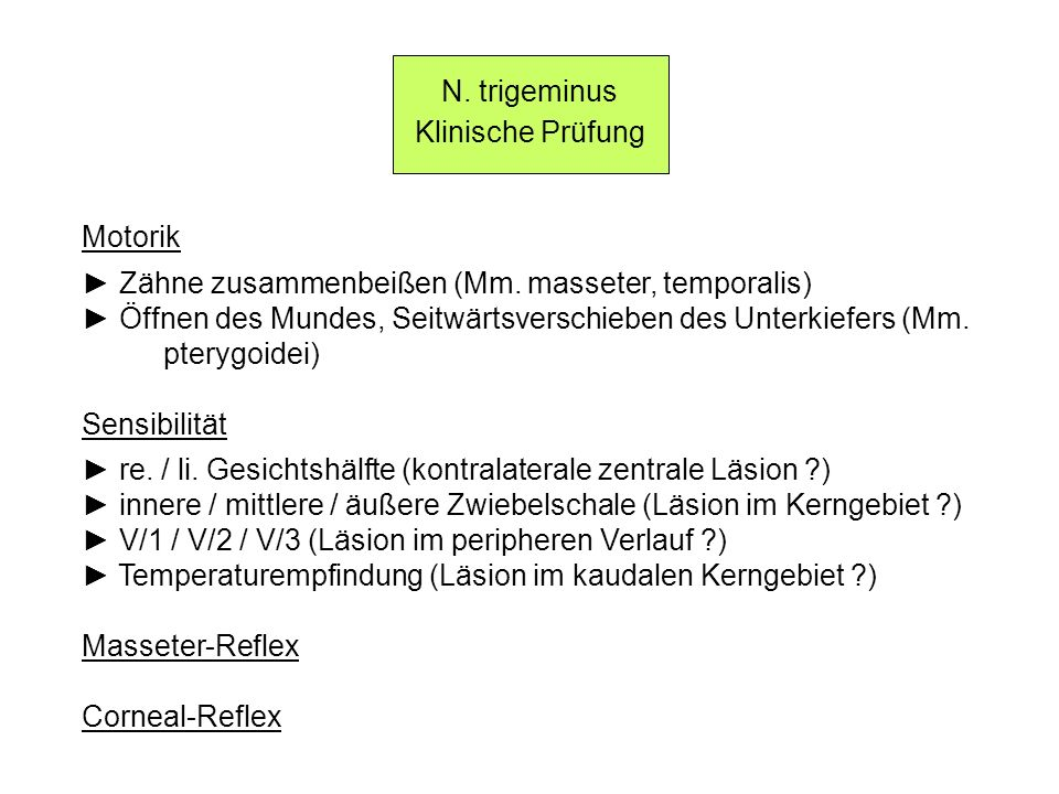 N. trigeminus Klinische Prüfung. Motorik. ► Zähne zusammenbeißen (Mm. masseter, temporalis)